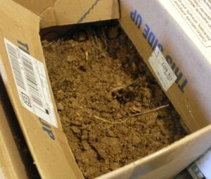 amazon customer return fraud box of dirt